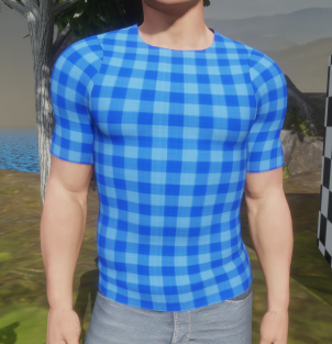 Blue Check T-Shirt Front View 29 Dec 2017