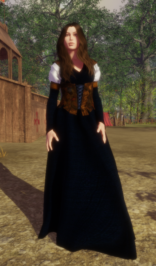 Solas Medieval Gown 2 11 Feb 2018